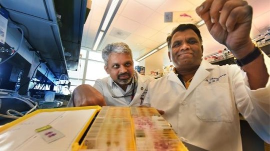 two recognised chemotherapy retailers effectively goal breast cancer stem cells